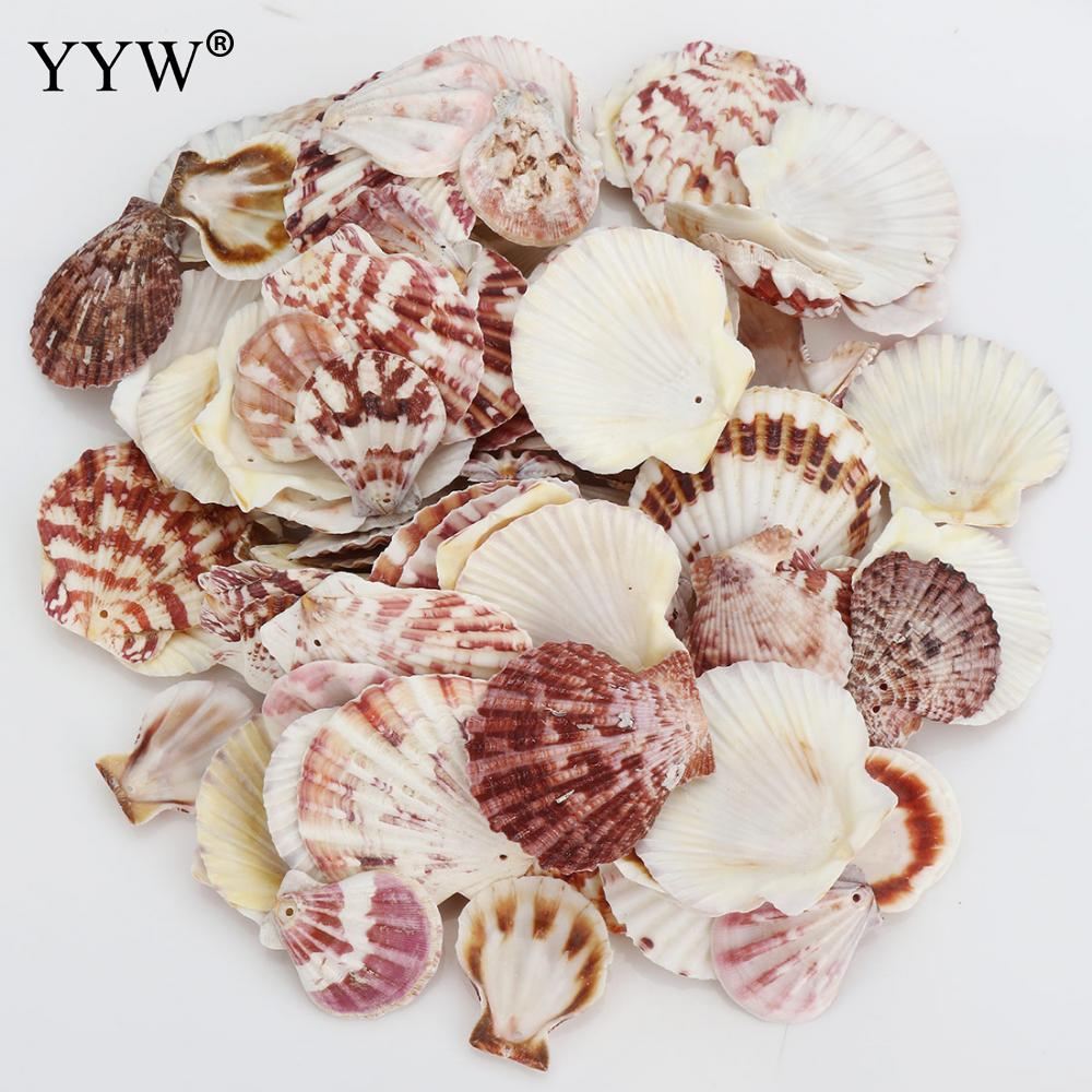 100pc/Bag Sea Shells Schelpen Coquillage Conchas Shell For Home Decoration Babylon Nautical Home Marine Decor 1.5mm Scallop
