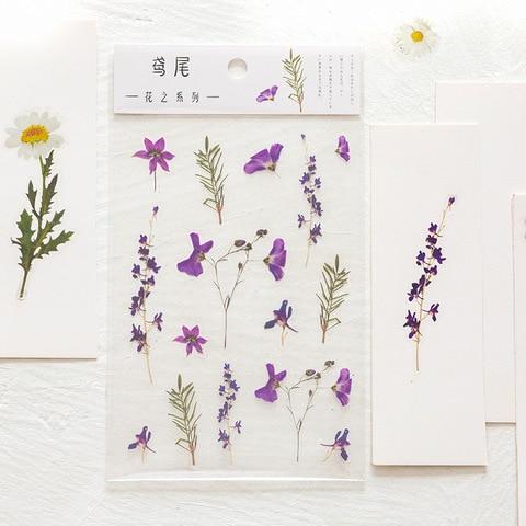 serie de flores do animal estimacao