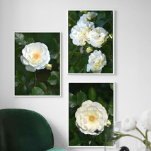 White Rose Flower Green Leaves Wall Art Canvas Painting Nordic Posters And Prints Plant Wall Pictures For Living Room Home Decor цена