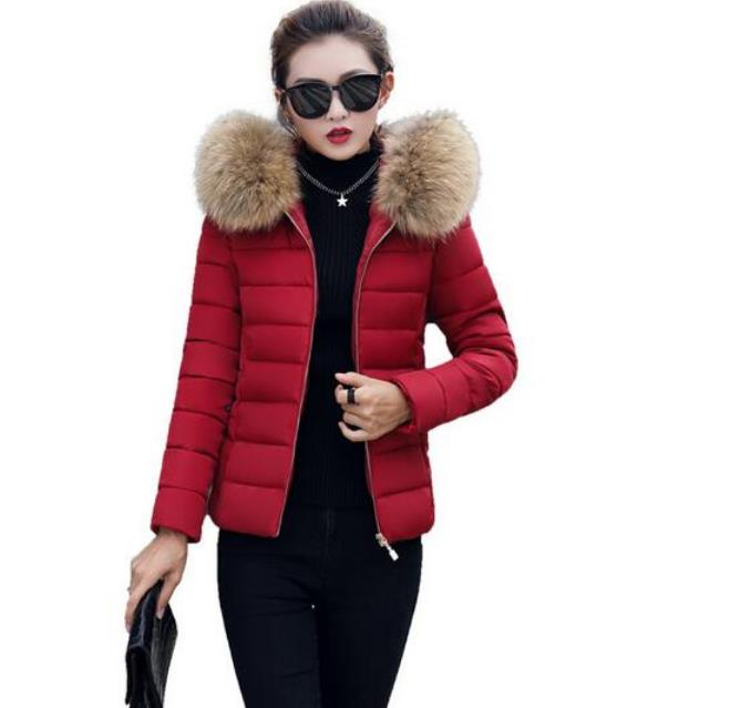 2019 Winter New Short Large Fur Collar Cotton Female Korean Version Of The Slim Slimming Cotton Down Jacket