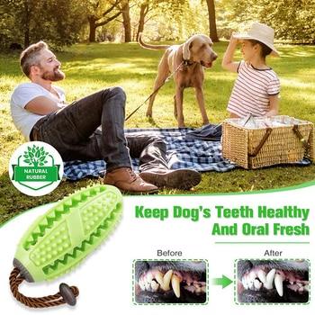 Toothbrush Dispensing Ball 3