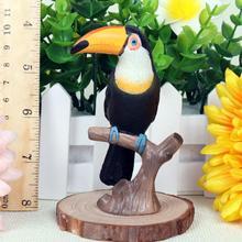 DIY Simulation Toucan Animal Model Bird Figurine home decor miniature fairy garden decoration accessories modern Toy For Kids