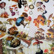 54 шт винтажный грибной иллюстрации серной кислоты деко стикер