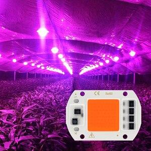 Image 5 - Фитолампа Cob, светодиодная лампа полного спектра для выращивания растений, 220 В, 10 Вт, 20 Вт, 30 Вт, 50 Вт, 380nm 780nm