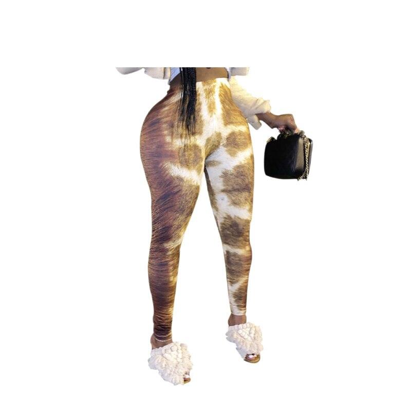 9532长颈鹿 (4)