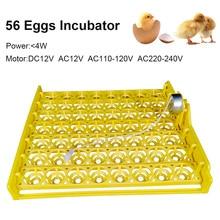 Free Shipping 48/56/132/154 Beautiful Bird Egg Tray 220V Automatic Flip Motor DIY Automatic incubator Accessories Incubator TOP