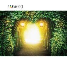 Laeacco Green Backdrops Spring Forest Tree Vine Mystery Way Baby Child Scenic Photographic Background Photocall Photo Studio(China)