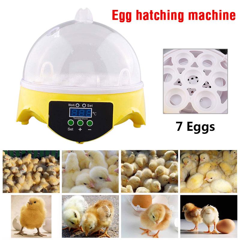 Digital Mini 7-Egg Bird Automatic Clear Chicken Duck Egg Incubator Hatcher