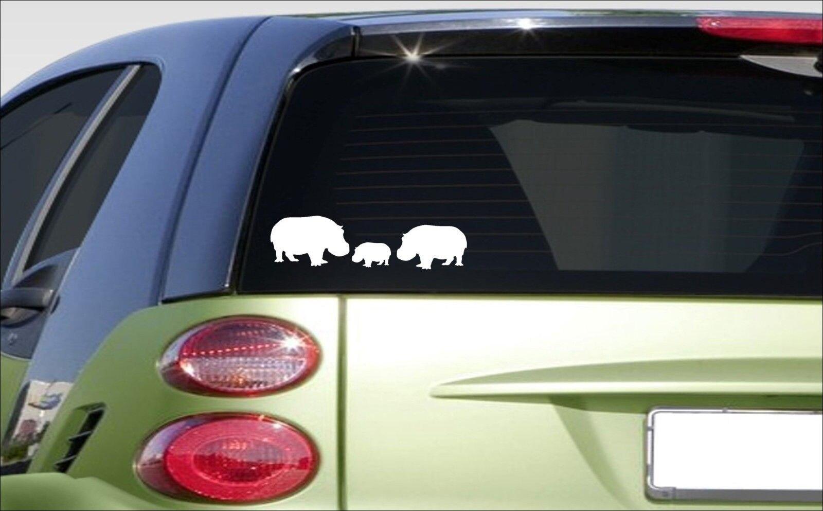 Hippo Family 8.5