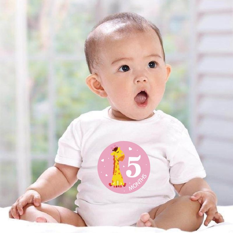 12 Pcs/set Baby Pregnant Women Monthly Photo Stickers Fun Lovely Cartoon Month 1-12 Milestone Clothing Decoration Stickers D08C