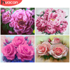 HUACAN Oil Painting By Number Flower Pictures By Numbers Peony DIY Drawing Canvas Hand Painted Home Decoration