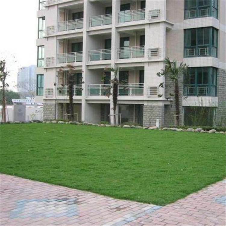 Lawn Grid Firefighting Parking Lot-Only Community Garden Green Slope Protection Plastic Lawn Brick Lattice Grass Planting Cell P