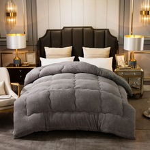 Lamb Cashmere Velvet Fabric Warm Winter Wool Quilt Thicken Comforter Duvet Blanket King Queen Size Double Cashmere 1 Pcs