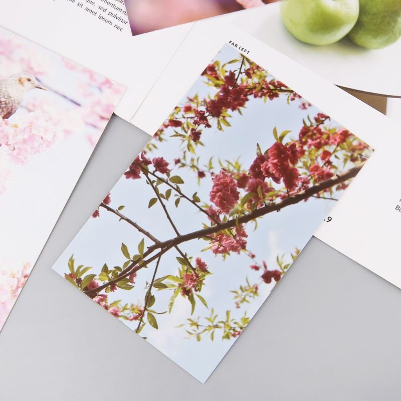 30 Sheets Peach Blossom Paintings Retro Vintage Postcard Christmas Gift Card Wish Poster Cards  5