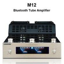 M12 مكبر للصوت مرحبا فاي بلوتوث فراغ أنبوب مكبر صوت استيريو دعم USB 2 قنوات الصوت مكبر كهربائي باس hifi 220 فولت أو 110 فولت