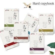Art-Writing-Books Copybook Calligraphy Chinese-Characters Learn Adults Pen Hanzi Erasable-Pen