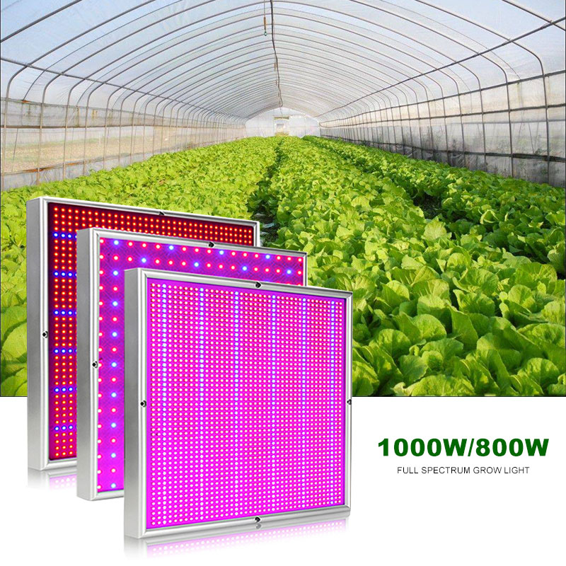 Grow Tent Led Grow Light 1000W 800W 500W Lamp For Plants Phyto Lamp Full Spectrum Indoor Led Aquarium Flowers Fitolampy Fitolamp
