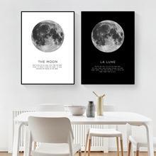 Черно белая фотография на холсте Луна для гостиной hd2870