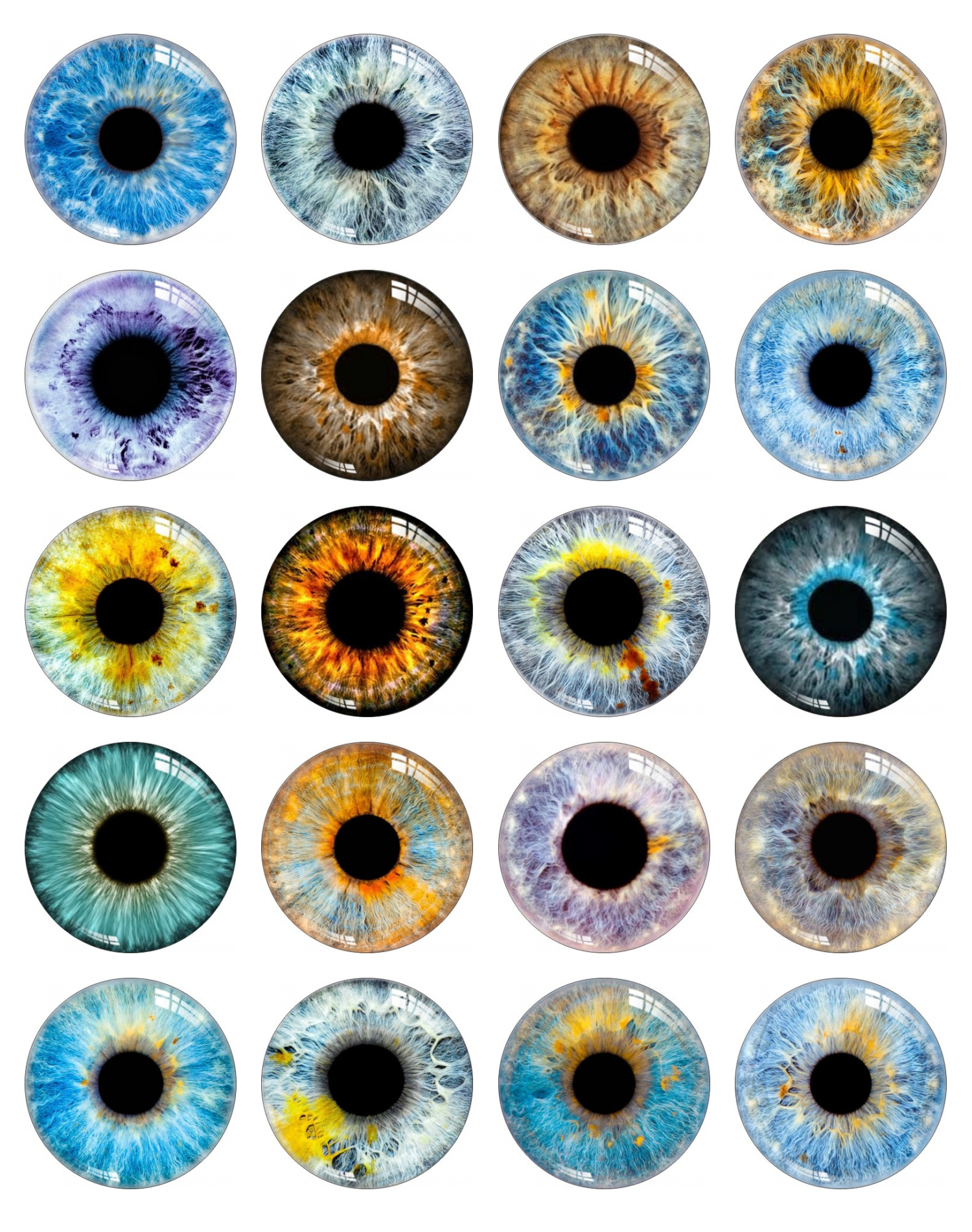 Handmade Eye Pupil Snap Button 10mm 12mm 14mm 16mm 18mm 20mm 25mm 30mm  Round Dragon Photo Glass Cabochon Jewelry Findings
