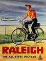 Металлическая винтажная Ретро потертая-шикарная Оловянная табличка Raleigh Wall