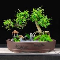 Purple sand Bonsai Potted Rectangular Landscape Modeling Oval Rockery Desktop Micro Ceramic Underwater Shallow Flower pot