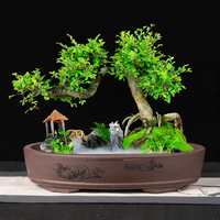 Purple sand Bonsai Potted Rectangular Landscape Modeling Oval Rockery Desktop Micro Ceramic Underwater Shallow Flower pot