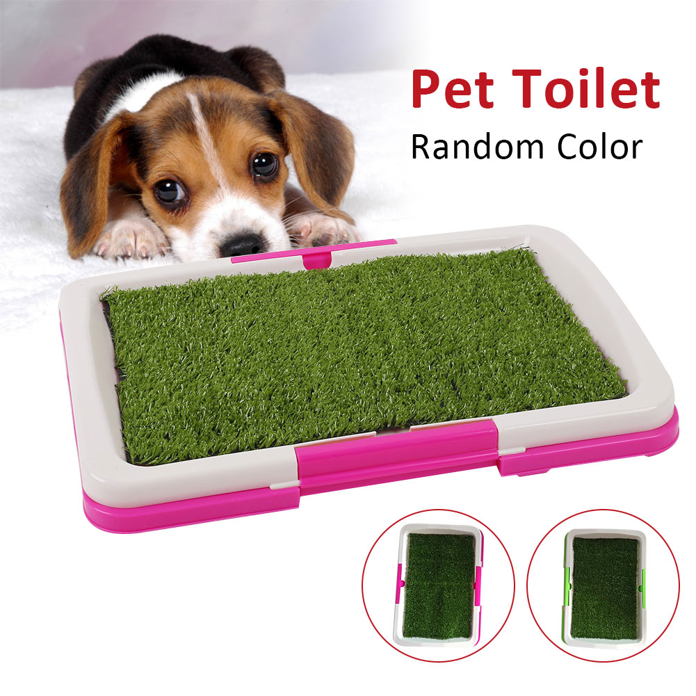 SOLEDI Pet Toilet Pad Grass Mat Indoor Tray Potty Litter Urinary Dog Supply Home Pet Accessories Pet Mat Training Tray For Home|Litter Boxes| - AliExpress