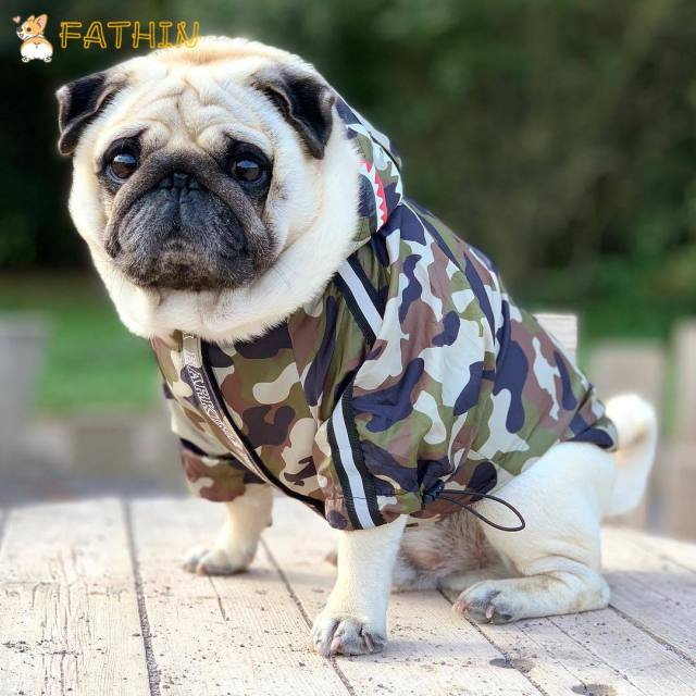 FATHIN Dog Clothes Adidog Camouflage French Bulldog Pupreme Shirt Dog Camo Windbreaker Sport Retro Dog Hoodies Pet Clothes 5