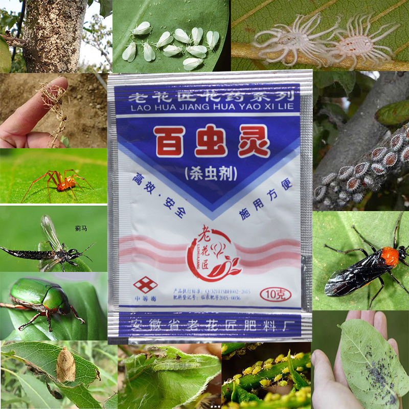 2 Bags Insecticide Flower Plant General 100 Insect Ling Household Low Toxicity Insecticide Flowers Aphid Starscream Insectic
