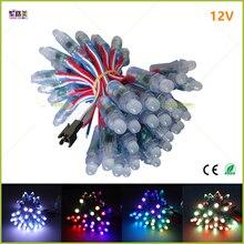 1000pcs DC 5V 12V WS2811 IC RGB LED מודול מחרוזת אור 12mm מלא צבע IP68 חיצוני עמיד למים פרסומת LED פיקסל אור