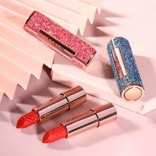 Colorful Envy Color Sequins Art Lipstick Velvet 4 hot color