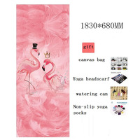 Flamingo Print Suede Yoga Mat with Small Watering Can Yoga socks Yoga headscarf canvas bag For Beginner Fitness Mats