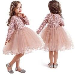 Outono meninas flor rendas princesa vestido de festa vestidos crianças férias malha tutu vestido crianças manga longa roupas casuais