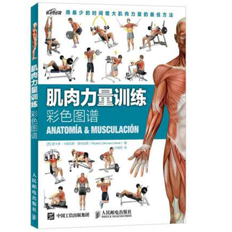 Muscle Strength Training Color Map Muscle Exercise Guide Training Diagram Tutorial Books Strength Training Fitness Books