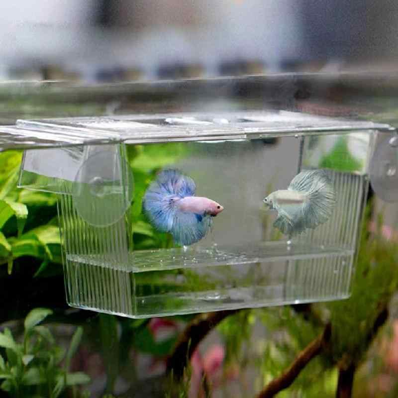 شفاف حوض للأسماك من الأكريليك تربية العزلة صندوق حوض السمك التفريخ حاضنة حامل Viviparous الأسماك فقس حوض السمك Accessori