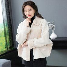 Winter Woman Warm Teddy Coat Lmitation Lambs Wool Fabric Outerwear Women Faux Berber Fleece Plush Jackets Pink Blue Red Beige