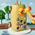 Kleinkind Spielzeug Magnetischen Vogel Fangen Bugs Spiel Klopfen Fütterung Ziehen Auto Musical Specht 5 In 1 Funktion Früh Pädagogisches Spielzeug