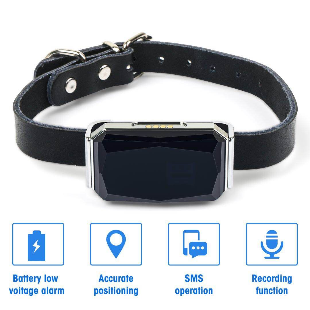 G12P IP67 Waterproof Pet Collar GSM AGPS Wifi LBS Mini Light GPS Tracker for Pets Dogs Cats Cattle Sheep Tracking Locator