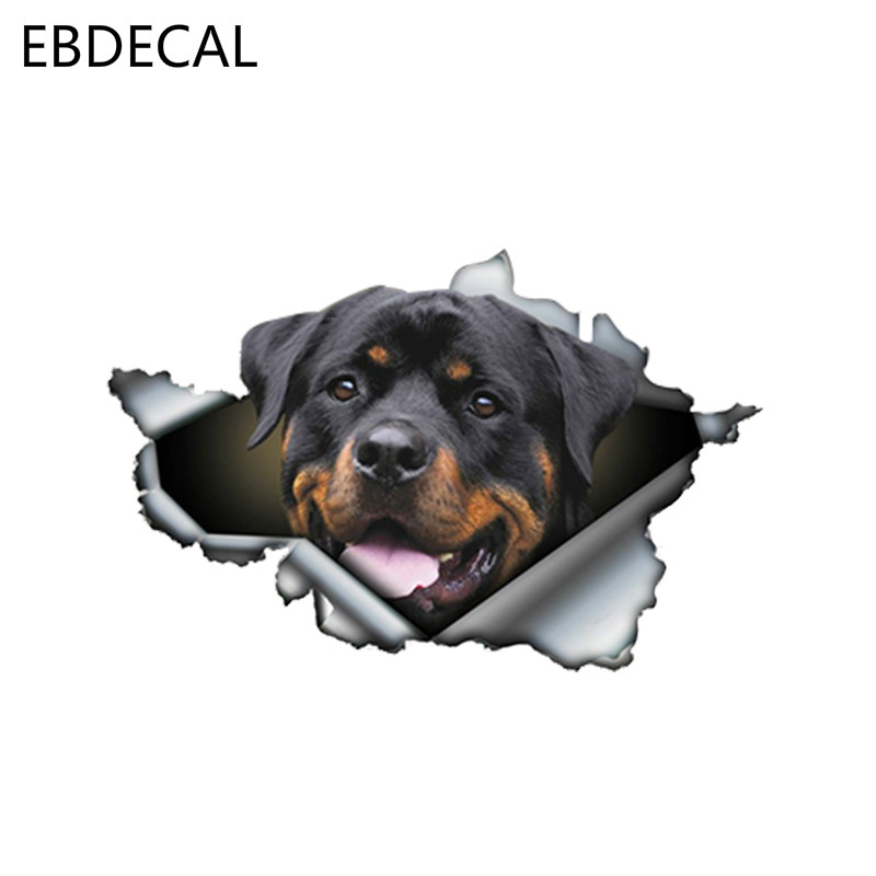 EBdecal Funny Rottweiler For Auto Car/Bumper/Window/Wall Decal Sticker Decals DIY Decor CT6214