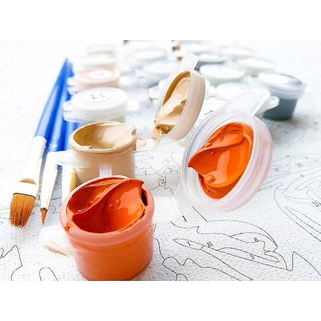 chenistory 60x75 см рамка diy живопись по номерам красочные фотография