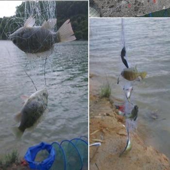Best No1 Fishing Net Design Copper Spring Shoal Fishing Net Fishing Accessories cb5feb1b7314637725a2e7: 3size 1.5cmX1.5cm|4size 2cmX2cm|5size 2.5cmX2.5cm|6size 3cmX3cm