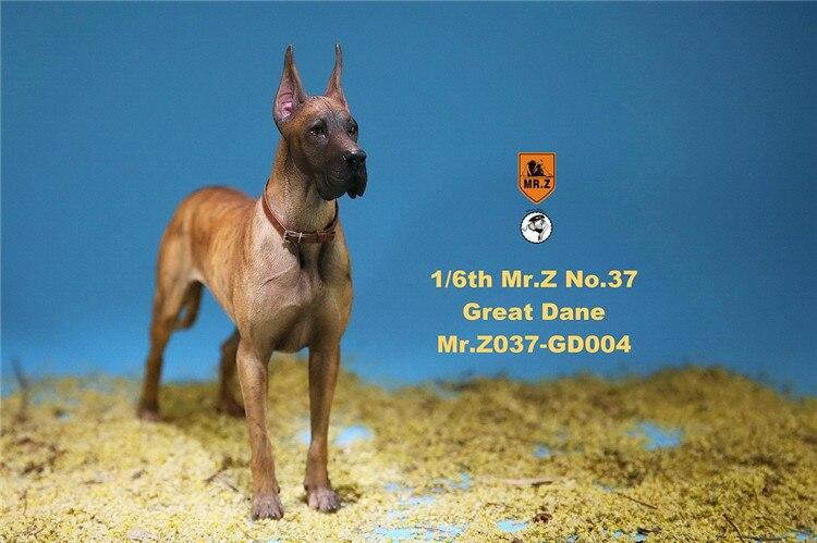 In Lager 1/6 Szene Zubehör Mr. Z MRZ037 Die Deutsch Great Dane 6 farben Haustier Hund Modell Tier Abbildung Modell Spielzeug für 12 ''Körper - 5