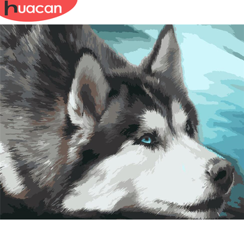 HUACAN DIY Painting By Numbers Dog Hand Painted Paintings Art Gift Pictures By Number Animal Kits Drawing On Canvas Home Decor