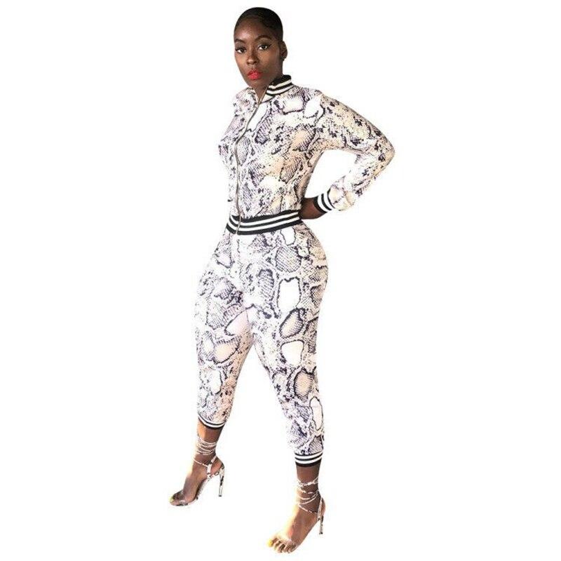 Echoine Snake Print Two Piece Set Skinny Club Outfits Matching Sets Sport Women Tracksuit Jogging Femme Zipper Jacket Plus Size