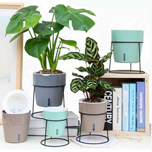 Flower-Pot Self-Watering Office-Desk-Decoration Plastic Creative Home Modern Colourful
