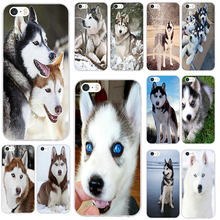 Aladdin Siberian Husky Dog Soft TPU Silicone Phone Cases for iPhone 6 6S Plus 5 5S SE 5C 4 4S 7 8 Plus X XR XS Max Cover Bags(China)