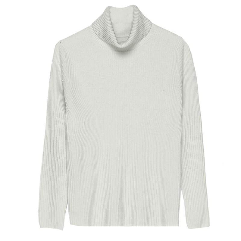 Minimalist Women Essential Pullover Sweaters Turtleneck Wool Cashmere Knitted Tops Woman Winter Slim Fit High Collar Knitwear