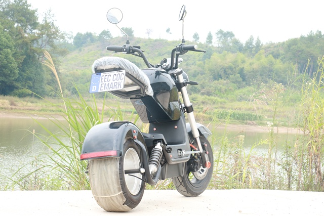 EEC/COC Approved 1500w Powerful M3 Motorcycle Electric Citycoco Scooters Adult EU STOCK 60V 20AH Electric Motorcycle 55KM 4