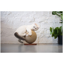 Rotating Globe Cat Scratch Post Jumping Toy Scratching Wood Climbing Tree For Frame Pet Furniture Toys