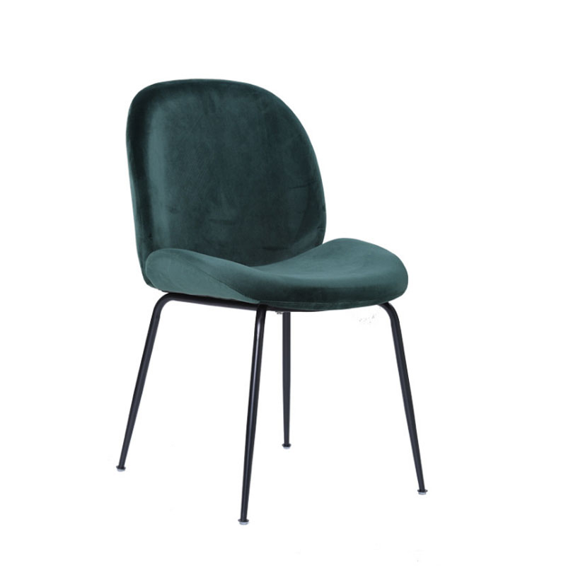 Nordic Style Metal Beetle Dining Chair Modern Minimalist Cafe Chair Creative Leisure Computer Chair